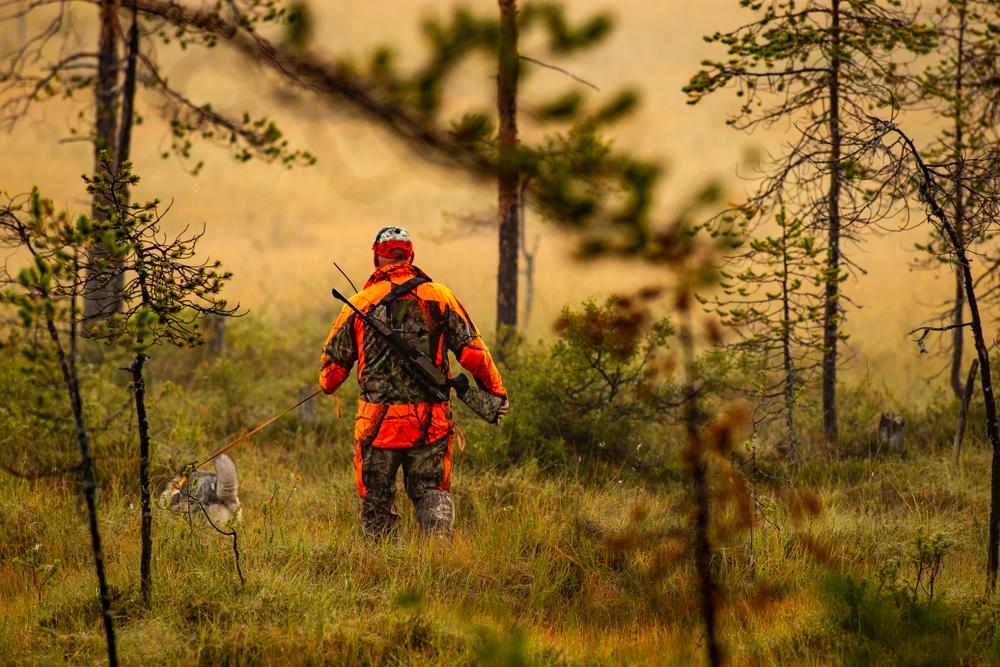 Einführung zur Jagdpraxis cover