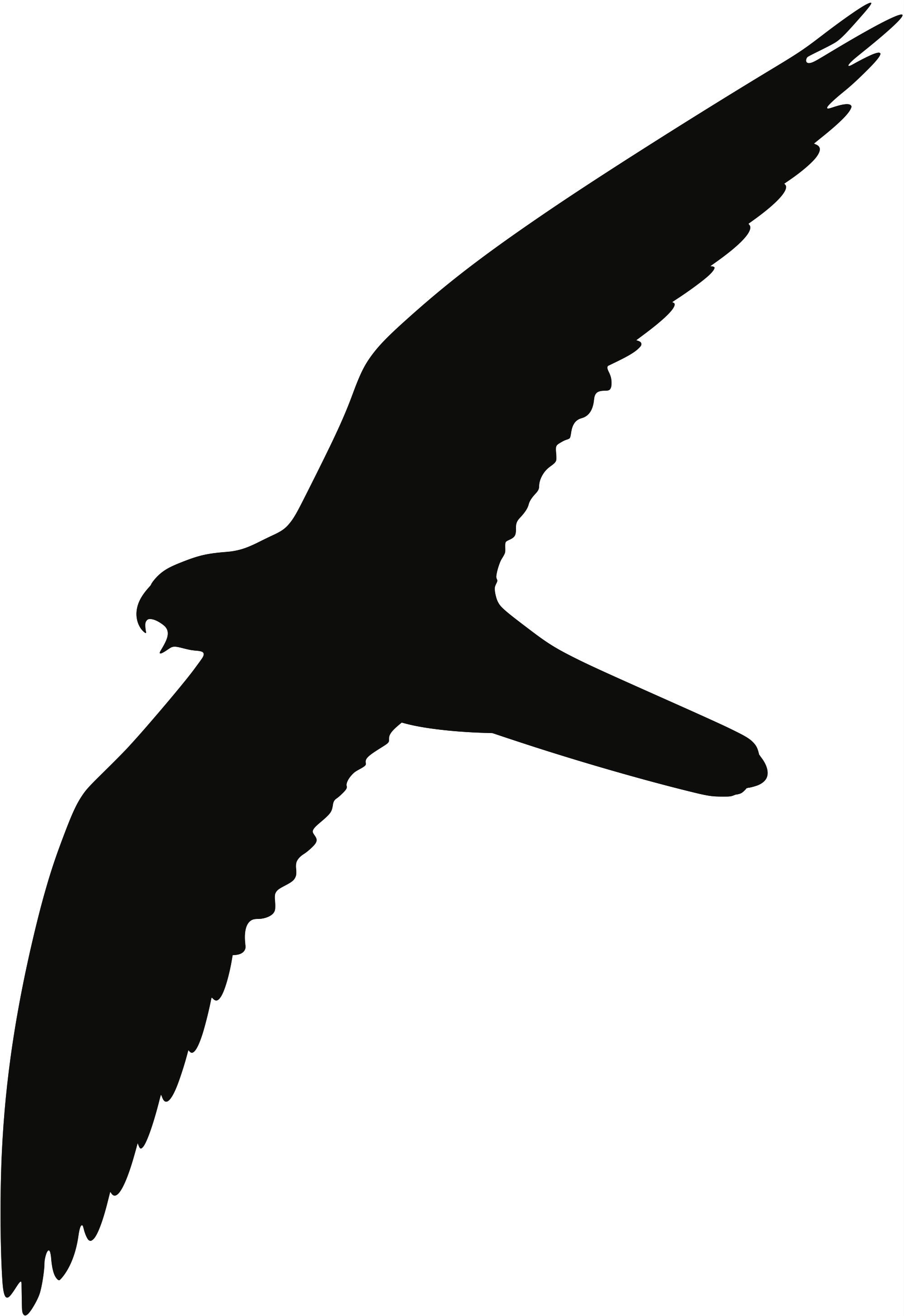 Baumfalke Flugbild