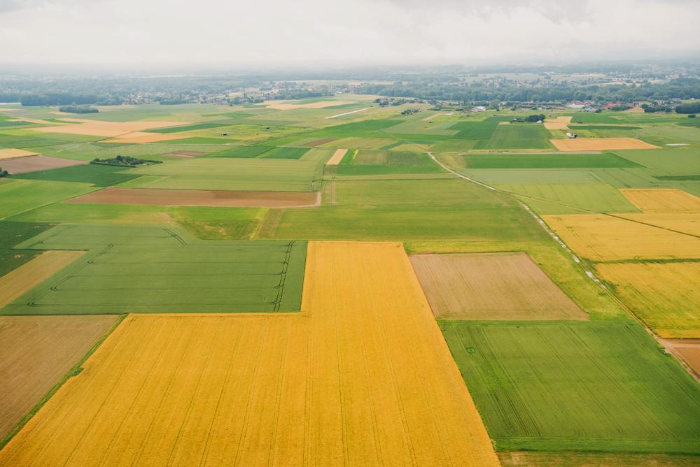 Landwirtschaftliche Nutzfläche ohne Grenzstrukturen