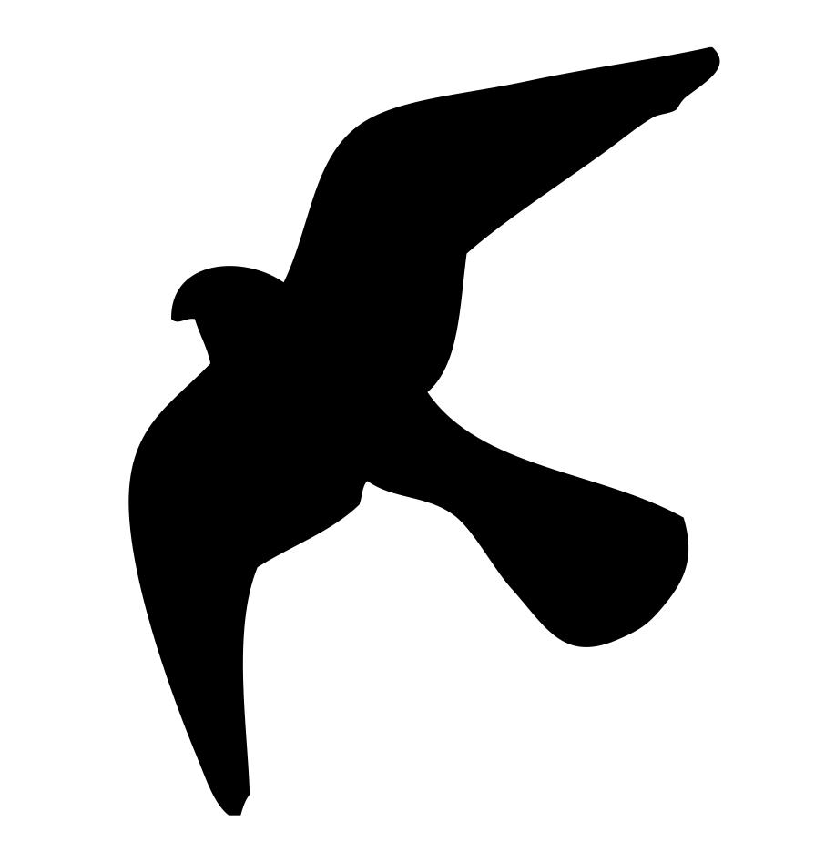 Flugbild des Falken