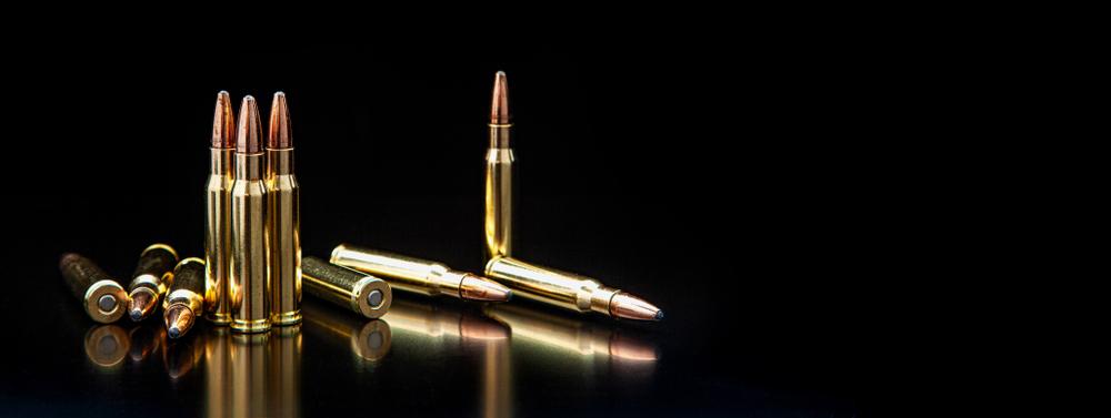 Büchsenmunition cover